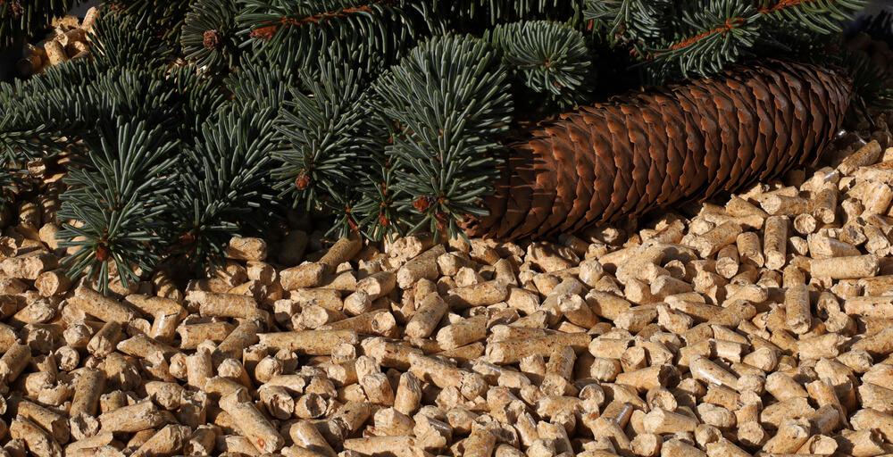 aquecedor a biomassa